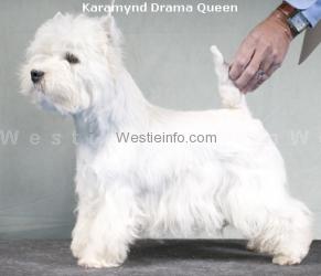 Karamynd Drama Queen