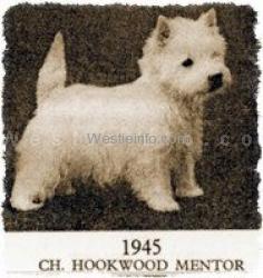 Hookwood Mentor